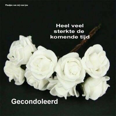 beri.nl - surinaamse familieberichten - condoleances esmay sleeswijk