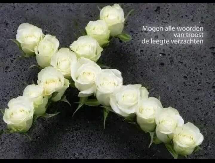 Siegfried Ronald Willem Stekkel
